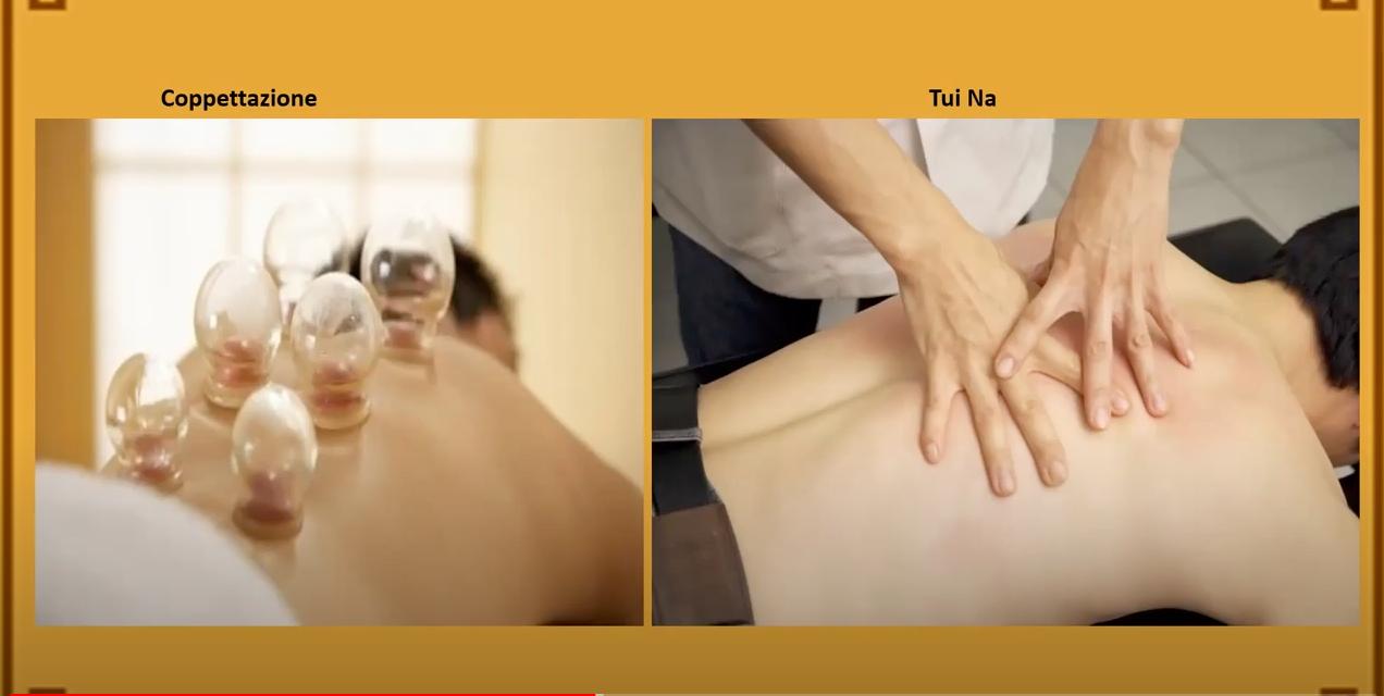 """Conferenza """"Applicazione e cura del dolore nella Medicina Tradizionale Cinese di Shaolin"""""""